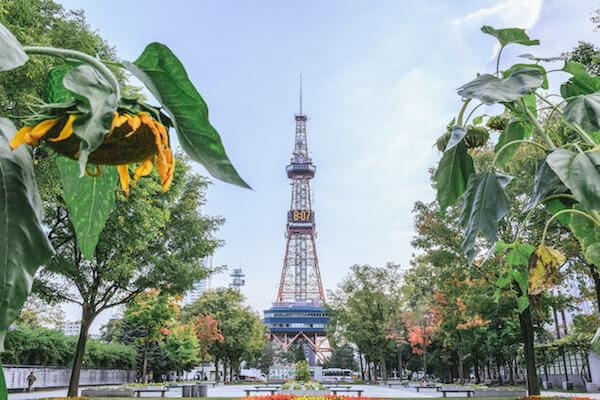 札幌の大通公園